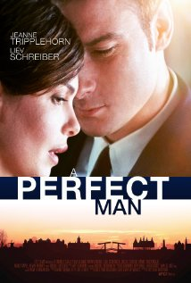 Watch A Perfect Man Online