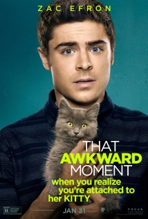 Watch That Awkward Moment Online